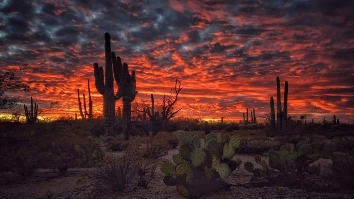 Tucson, United States