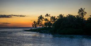 Florida/ Photo by Pixabay