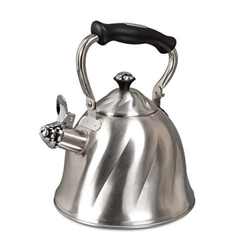 Mr. Coffee Alderton Stainless Steel Camping Tea Kettle