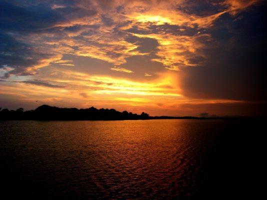 Traveling, Amazon River, Cruises, Delfin