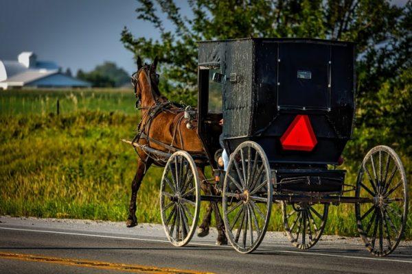 Traveling, USA, Amish, Transport