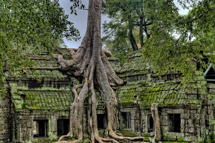 The ruins of Angkor/ Image by James Wheeler from Pixabay