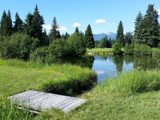Traveling, Camping, Montana, Whitefish