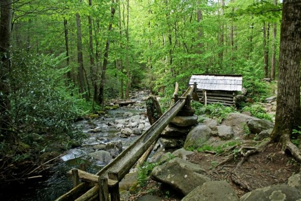 Traveling, Tennessee, Best Parks, Roan Mountain State Park