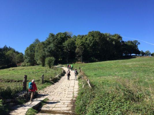 Traveling, Spain, Hiking, Options, Camino de Santiago