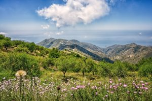 Traveling, Spain, Hiking, Options