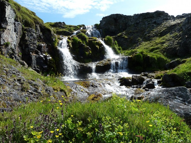 The best time to visit Iceland is during the summer/ Image by Áróra Ásgeirsdóttir from Pixabay