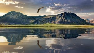 Traveling, New Zealand, Things to See