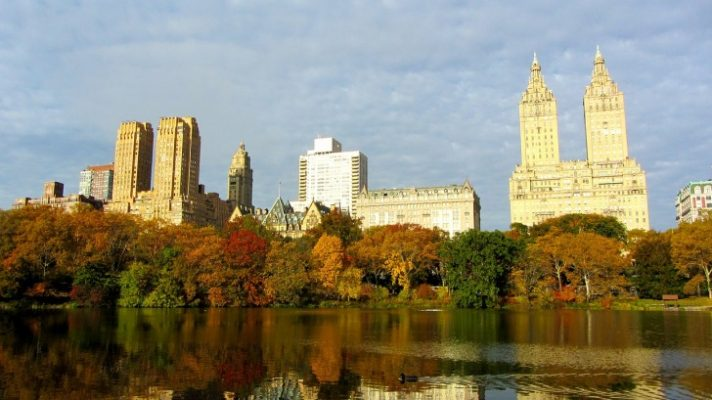 Traveling, New York, 2-Day Trip, Guide, Central Park