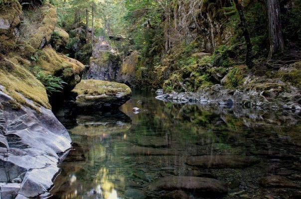 Traveling, Oregon, Hiking, Opal Creek