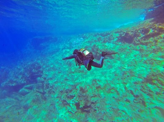 Traveling, USA, Ginnie Springs, Scuba Diving