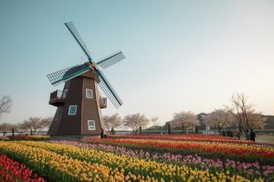 Traveling, Netherlands, Hiking