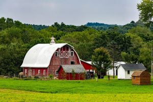 Traveling, USA, Amish, Facts